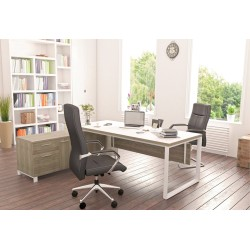 Bureau direction SILVER